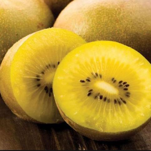 Actinida deliciosa 'Kiwi gold' - Vrtnarstvo Breskvar