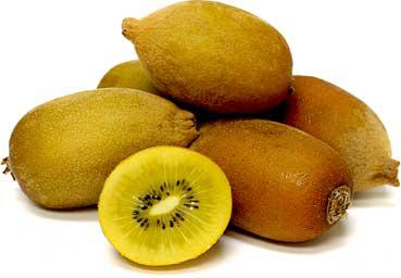 Vrtnarstvo Breskvar - Actinidia Deliciosa Kiwi Gold