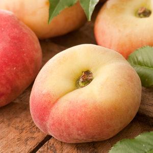 Prunus persica 'Piattafortwo' - Vrtnarstvo Breskvar