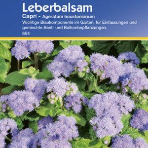 Vrtnarstvo Breskvar - Ageratum houstonianum Capri