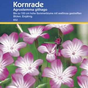 Vrtnarstvo Breskvar - Agrostemma githago