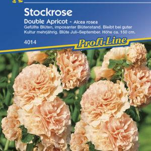 Vrtnarstvo Breskvar - Alcea rosea Chaters Apricot