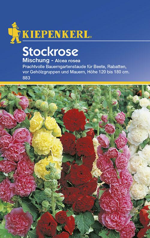 Vrtnarstvo Breskvar - Alcea rosea Mix