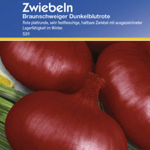 Vrtnarstvo Breskvar - Allium Cepa Braunschweiger Dunkelblutrote