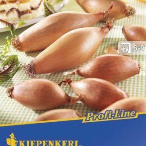 Vrtnarstvo Breskvar - Allium Cepa Longor