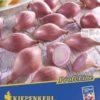 Vrtnarstvo Breskvar - Allium cepa Rosanna