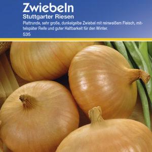 Vrtnarstvo Breskvar - Allium cepa Stuttgarter Riesen