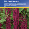 Vrtnarstvo Breskvar - Amaranthus caudatus Hangende Blutenahre