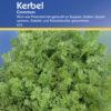 Vrtnarstvo Breskvar - Anthriscus cerefolium Commun