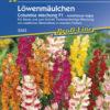Vrtnarstvo Breskvar - Antirrhinum majus Columbia F1 Mix