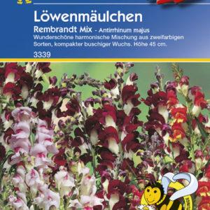 Vrtnarstvo Breskvar - Antirrhinum majus Rembrandt Mix