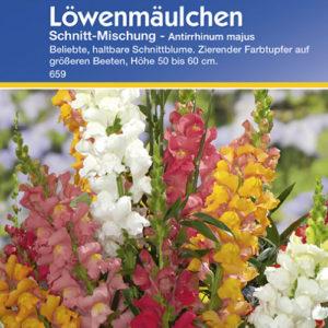 Vrtnarstvo Breskvar - Antirrhinum majus Schnitt Mix