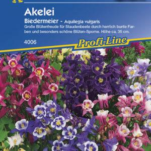 Vrtnarstvo Breskvar - Aquilegia vulgaris Biedermeier