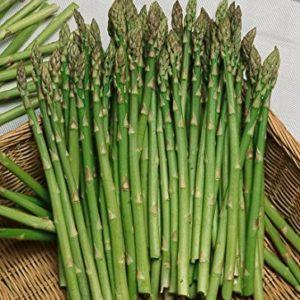 Vrtnarstvo Breskvar - Asparagus officinalis