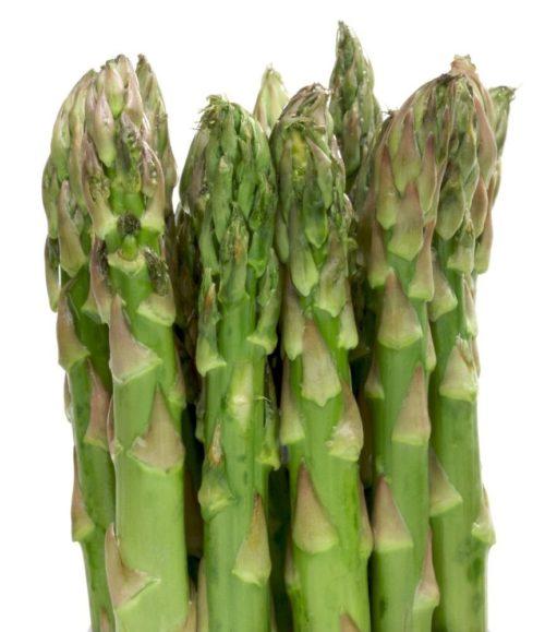 Vrtnarstvo Breskvar - Asparagus officinalis Mary Washington