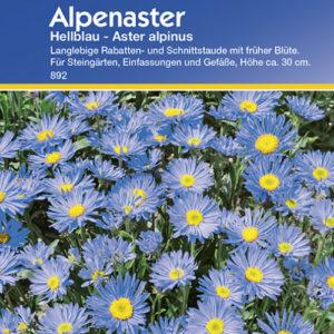 Vrtnarstvo Breskvar - Aster alpinus Hellblau