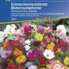 Vrtnarstvo Breskvar - Blütensymphonie schneckenresistente Mix