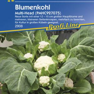Vrtnarstvo Breskvar - Brassica oleracea botrytis Multi Head