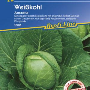 Vrtnarstvo Breskvar - Brassica oleracea capitata Ancoma
