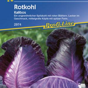 Vrtnarstvo Breskvar - Brassica oleracea capitata Kalibos