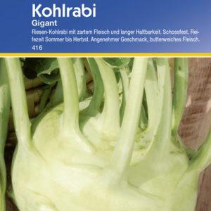 Vrtnarstvo Breskvar - Brassica oleracea gongylodes Gigant