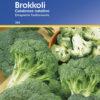 Vrtnarstvo Breskvar - Brassica oleracea italica Calabrese Natalino