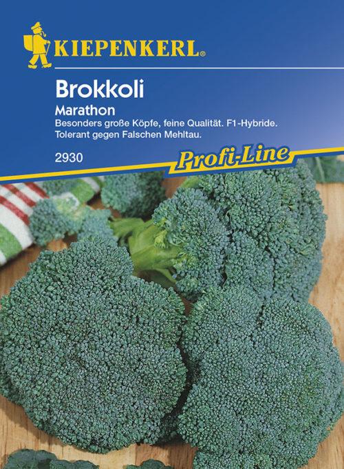 Vrtnarstvo Breskvar - Brassica oleracea Italica Marathon F1
