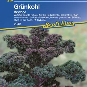 Brassica oleracea sabauda Redbor F1