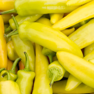 Vrtnarstvo Breskvar - Capsicum Annuum As Yellow (simbolična slika)