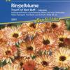 Vrtnarstvo Breskvar - Calendula officinalis Touch of Red Buff