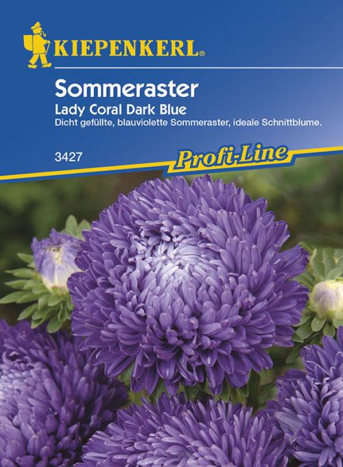 Vrtnarstvo Breskvar - Callistephus chinensis Lady Coral Dark Blue