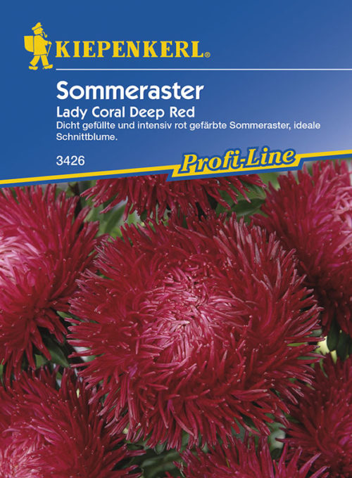 Vrtnarstvo Breskvar - Callistephus chinensis Lady Coral Deep Red