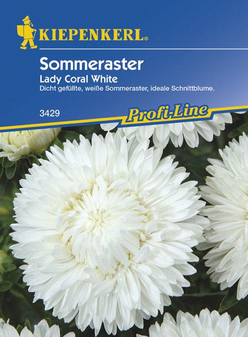 Vrtnarstvo Breskvar - Callistephus chinensis Lady Coral White