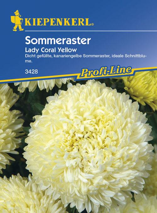 Vrtnarstvo Breskvar - Callistephus chinensis Lady Coral Yellow