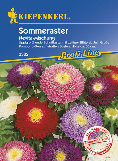 Vrtnarstvo Breskvar - Callistephus chinensis Nevita Mix