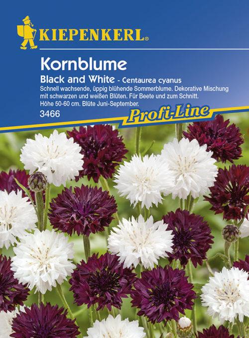 Vrtnarstvo Breskvar - Centaurea cyanus Black and White