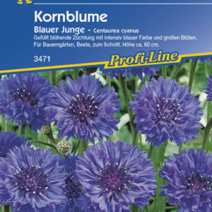 Vrtnarstvo Breskvar - Centaurea cyanus Blauer Junge