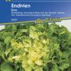 Vrtnarstvo Breskvar - Cichorium endivia Eros