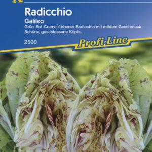 Vrtnarstvo Breskvar - Cichorium intybus Galileo