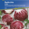 Vrtnarstvo Breskvar - Cichorium intybus Indigo
