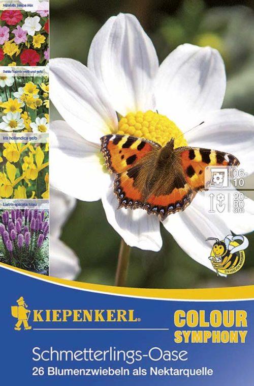 Vrtnarstvo Breskvar - Color Symphony Schmetterlings-Oase