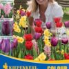 Vrtnarstvo Breskvar - Color Symphony Summer Fire