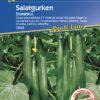 Vrtnarstvo Breskvar - Cucumis sativus Dominica F1