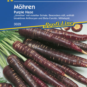 Vrtnarstvo Breskvar - Daucus carota Purple Haze F1