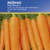 Vrtnarstvo Breskvar - Daucus carota Rote Riesen 2