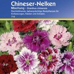 Vrtnarstvo Breskvar - Dianthus chinensis Mix