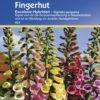 Vrtnarstvo Breskvar - Digitalis purpurea Excelsior