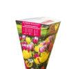 Vrtnarstvo Breskvar - Tulipa Flower Bouquet