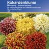 Vrtnarstvo Breskvar - Gaillardia pukhella Mix