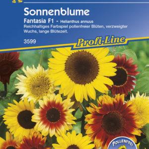 Vrtnarstvo Breskvar - Helianthus annuus Fantasia F1 Mix